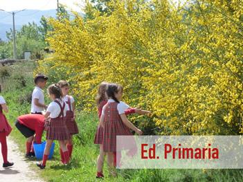 ed-primaria